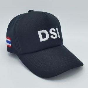 หมวกแก๊ป5ชิ้น 12 (3)
